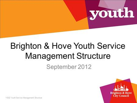 Brighton & Hove Youth Service Management Structure