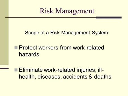 Scope of a Risk Management System: