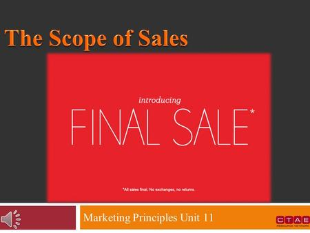 Marketing Principles Unit 11  The functions of Selling  Marketing as a complement to sales  Channels through which sales are promoted  Theories that.