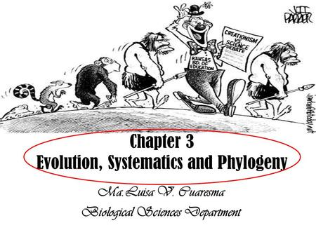 Ma.Luisa V. Cuaresma Biological Sciences Department Chapter 3 Evolution, Systematics and Phylogeny.
