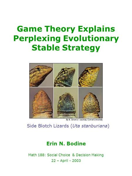 Game Theory Explains Perplexing Evolutionary Stable Strategy Erin N. Bodine Math 188: Social Choice & Decision Making 22 – April - 2003 Side Blotch Lizards.