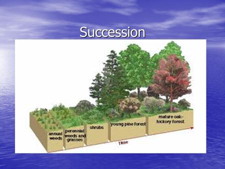Succession. Succession – is orderly, natural changes that take place in the community of an ecosystem. Succession – is orderly, natural changes that take.
