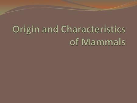 A. Origin of Mammals The first mammals appeared about 230 million years ago, during the Triassic period.