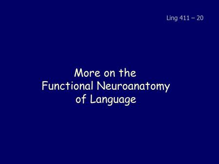 More on the Functional Neuroanatomy of Language Ling 411 – 20.