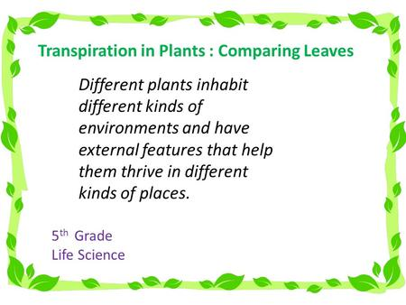 Transpiration in Plants : Comparing Leaves Different plants inhabit different kinds of environments and have external features that help them thrive in.
