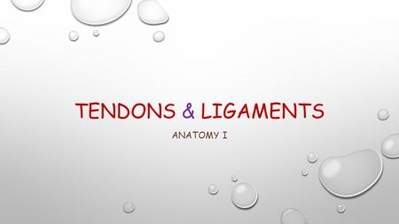 TENDONS & LIGAMENTS ANATOMY I. LIGAMENTS Add to the mechanical stability of joints Guide joint motion Prevent excessive motion.