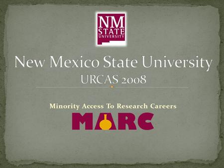 Minority Access To Research Careers. By, Nicholas G. Beltran Mentor: Dr. Antonio S. Lara Department of Chemistry and.