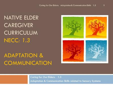 NATIVE ELDER CAREGIVER CURRICULUM NECC: 1.3 ADAPTATION & COMMUNICATION Caring for Our Elders: 1.3 Adaptation & Communication Skills related to Sensory.