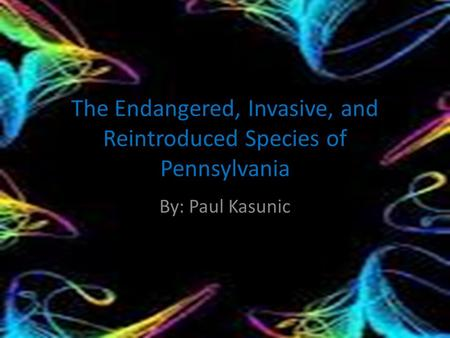 The Endangered, Invasive, and Reintroduced Species of Pennsylvania By: Paul Kasunic.