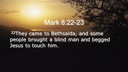 Mark 8:22-23 22 They came to Bethsaida, and some people brought a blind man and begged Jesus to touch him.