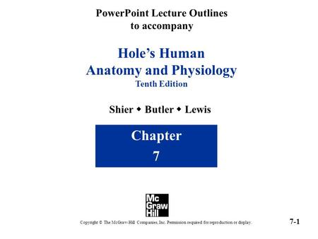 PowerPoint Lecture Outlines to accompany Hole's Human Anatomy and Physiology Tenth Edition Shier  Butler  Lewis Chapter 7 Copyright © The McGraw-Hill.