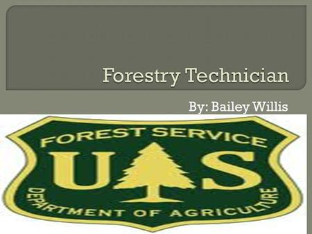 By: Bailey Willis.  Most employers require forestry technicians to have at least an associate degree in forestry technology. However, since this is a.