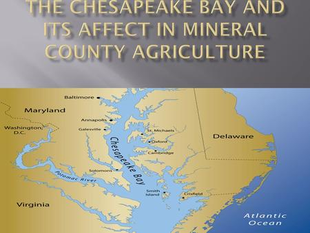  The Chesapeake Bay  History  How it affect agriculture enterprises  How does it affect Mineral County  Water Runoff  Careers related to the Chesapeake.