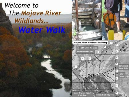 Welcome to The Mojave River Wildlands… Water Walk.
