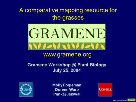 A comparative mapping resource for the grasses Gramene Plant Biology July 25, 2004 Molly Fogleman Doreen Ware Pankaj Jaiswal.