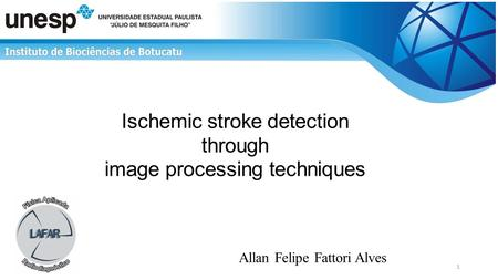 Ischemic stroke detection through image processing techniques Allan Felipe Fattori Alves 1.