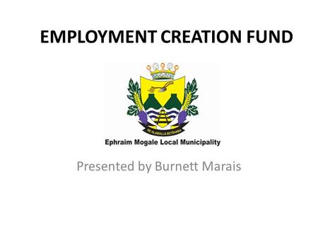 EMPLOYMENT CREATION FUND Presented by Burnett Marais.