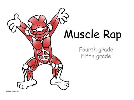 Fourth grade Fifth grade Muscle Rap. There are muscles in my body, there are 12 I should know. In the front of my body there are 6, here we go.