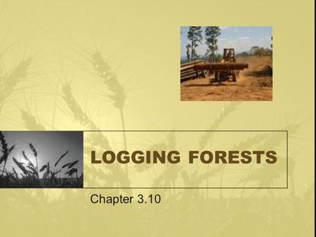 LOGGING FORESTS Chapter 3.10. Logging Forests Forests regulate climate by recycling water and carbon dioxide. transpirationOn hot days a large tree may.