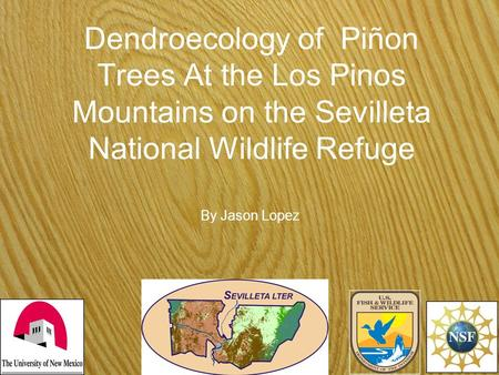 Dendroecology of Piñon Trees At the Los Pinos Mountains on the Sevilleta National Wildlife Refuge By Jason Lopez.