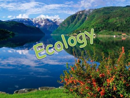 "The aims of our lesson are:  to repeat the words and expressions on the topic ""Ecology""  to work out ecological rules ""Rules for people in the forest"""