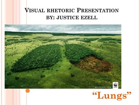 "V ISUAL RHETORIC P RESENTATION BY : JUSTICE EZELL ""Lungs"""