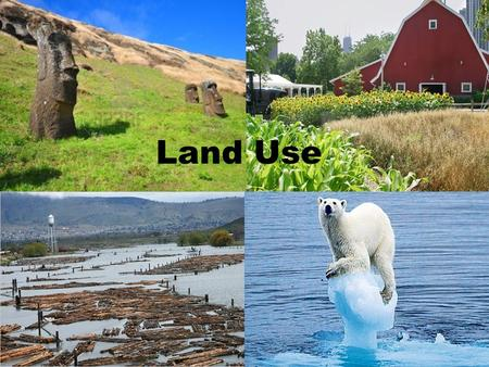 "Land Use. Case Study of Easter Island What caused the ""wasted appearance"" of the island? As the population grew, what happened to the forests? They cut."