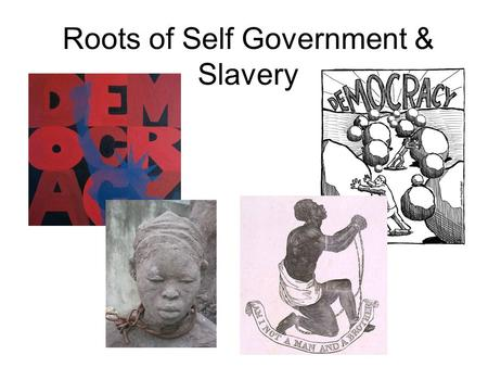 Roots of Self Government & Slavery. Slavery Grows As we have said, when plantations started popping up, the number of slaves in the thirteen colonies.