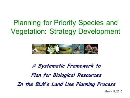 March 11, 2010 Planning for Priority Species and Vegetation: Strategy Development A Systematic Framework to Plan for Biological Resources In the BLM's.