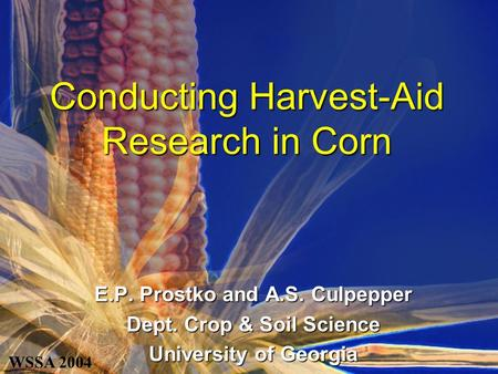 Conducting Harvest-Aid Research in Corn E.P. Prostko and A.S. Culpepper Dept. Crop & Soil Science University of Georgia WSSA 2004.