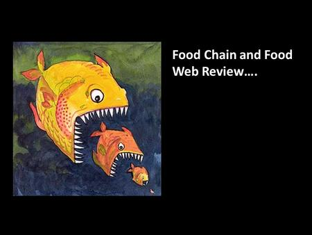 Food Chain and Food Web Review….. Q: Primary Producers? Primary consumers? Secondary consumers? Tertiary consumer?