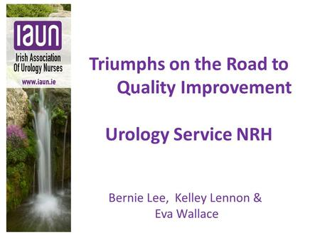 Triumphs on the Road to Quality Improvement Urology Service NRH Bernie Lee, Kelley Lennon & Eva Wallace.