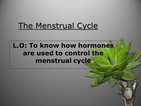 The Menstrual Cycle L.O: To know how hormones are used to control the menstrual cycle.