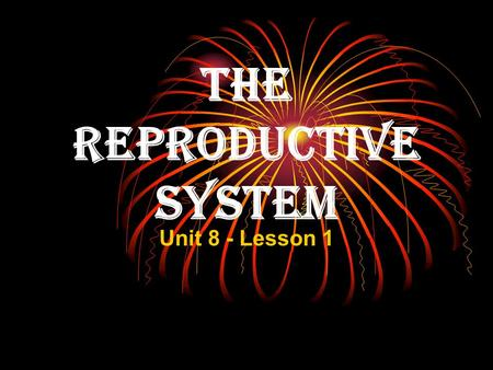 The Reproductive System Unit 8 - Lesson 1. The Endocrine System Endocrine system hormones are key factors in the function of human reproductive systems.