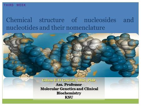 Chemical structure of nucleosides and nucleotides and their nomenclature Gihan E-H Gawish, MSc, PhD Ass. Professor Molecular Genetics and Clinical Biochemistry.