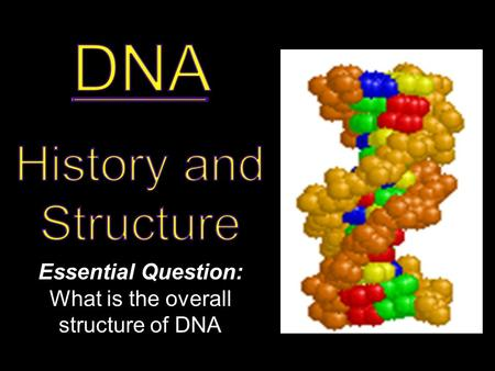 Essential Question: What is the overall structure of DNA.