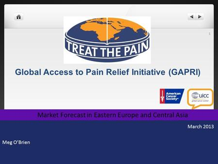 Global Access to Pain Relief Initiative (GAPRI) Meg O'Brien 1 Market Forecast in Eastern Europe and Central Asia March 2013.