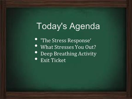 Today's Agenda 'The Stress Response' What Stresses You Out? Deep Breathing Activity Exit Ticket.