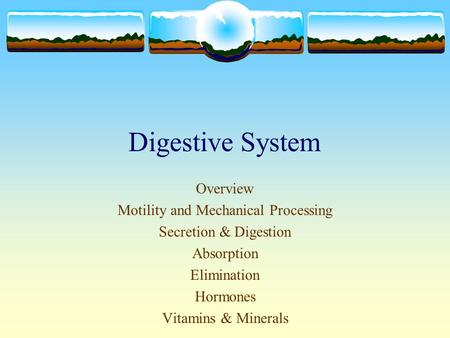 Digestive System Overview Motility and Mechanical Processing Secretion & Digestion Absorption Elimination Hormones Vitamins & Minerals.
