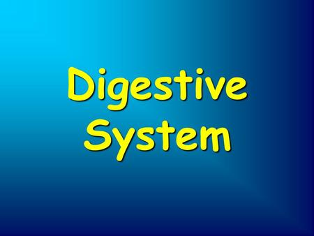 Digestive System. Mouth Esophogus Liver Anus Stomach Pancreas Large intestine Small intestine Rectum.