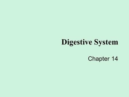 Digestive System Chapter 14 In your groups…you will come up with a definition (using YOUR WORDS) and a colored picture of it happening in the body. You.