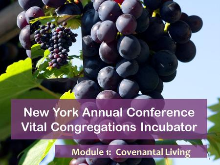 New York Annual Conference Vital Congregations Incubator Module 1: Covenantal Living.