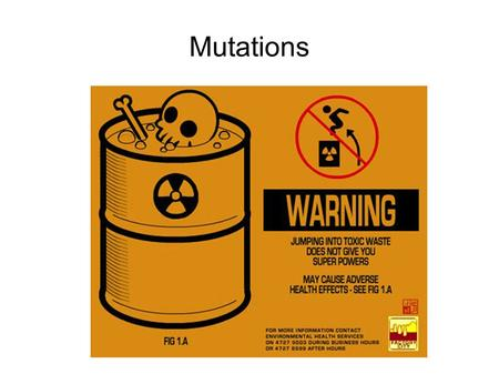 Mutations. Learning Objectives By the end of this class you should understand: The pedigree of a spontaneous mutation The concept of mutation rates and.