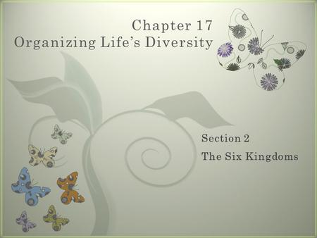 7 Chapter 17 Organizing Life's Diversity. Eubacteria  Contains about 5,000 species  Organisms in this kingdom:  Are prokaryotic  (Review: cells lack.