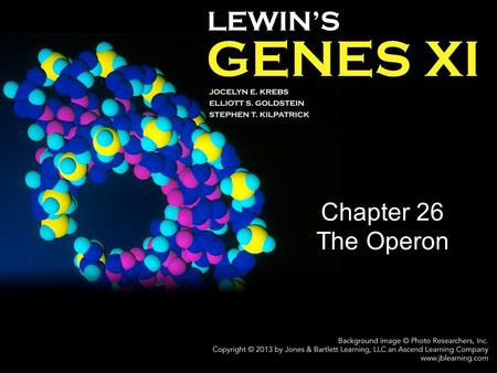 Chapter 26 The Operon.
