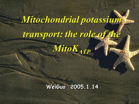 Mitochondrial potassium transport: the role of the MitoK ATP WeiGuo 2005.1.14.