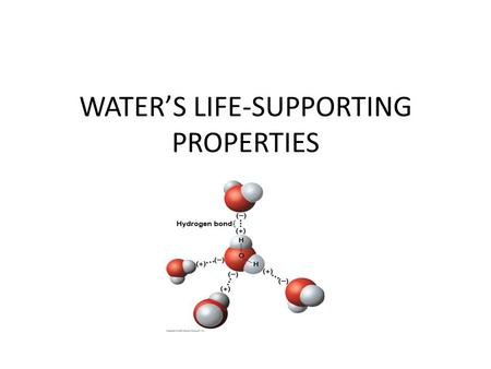 WATER'S LIFE-SUPPORTING PROPERTIES. Water's polarity leads to hydrogen bonding and other unusual properties The charged regions on water molecules are.