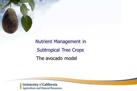 Nutrient Management in Subtropical Tree Crops The avocado model.