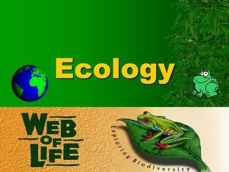 the relationship between species and organisms found