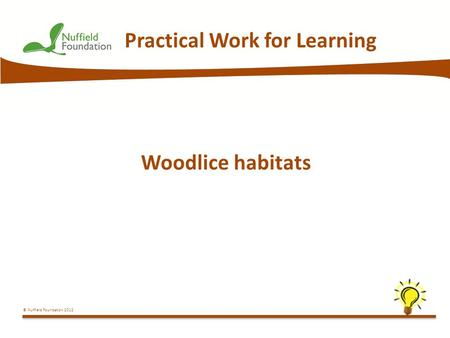 © Nuffield Foundation 2012 Practical Work for Learning Woodlice habitats.